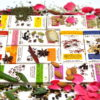 The Kocoatrait Spice Collection